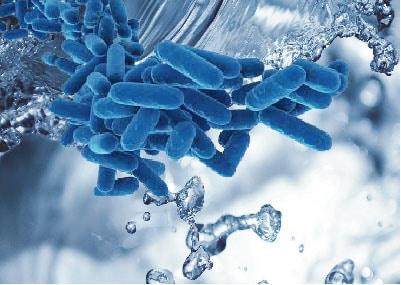 Nuevo RD sobre Legionella: ¿Qué novedades aparecen en su borrador?